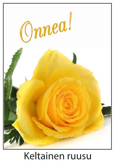 keltainen ruusu helsinki seuralaispalvelut